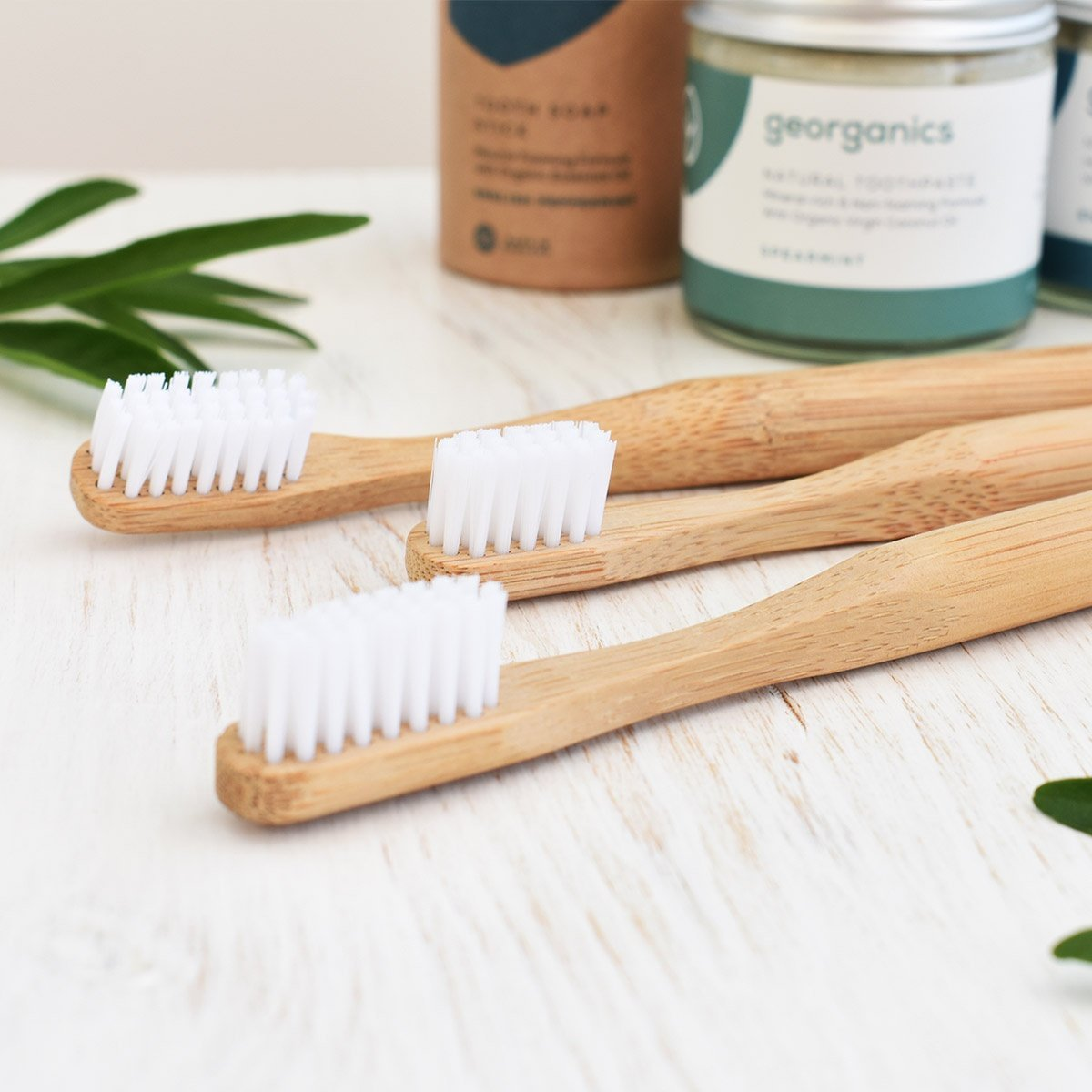 bamboo toothbrushes 3