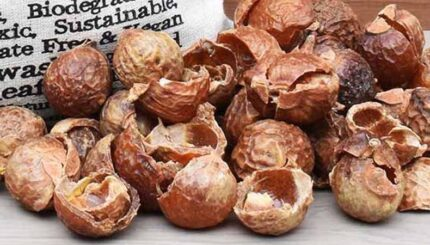 soapnut shells and bag