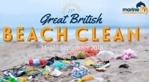 great british beach clean 2018