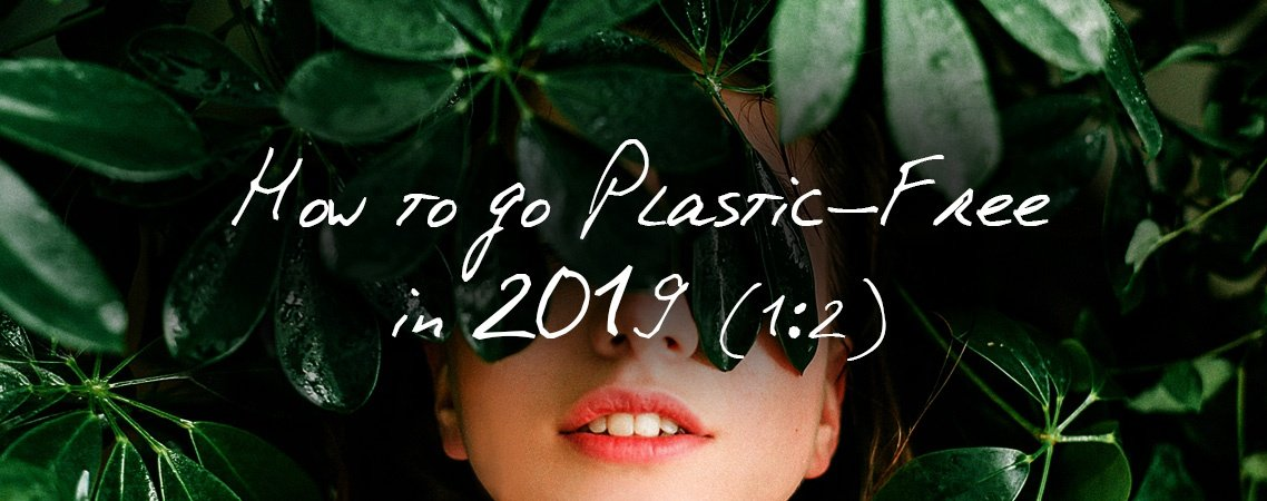 How to go Plastic-Free in 2019 | Peace With The Wild