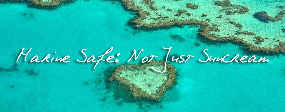 marine safe blog banner featured