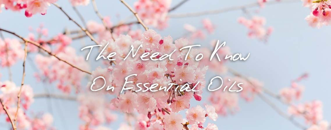 essential oils blog banner