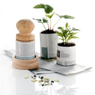 Nether Wallop Trading Co Paper Potter BIG Biodegradable Plant Pot With Plants