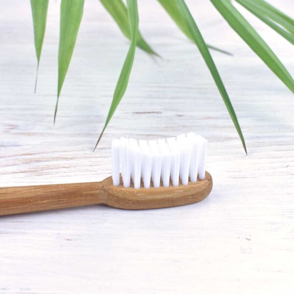 truthbrush, toothbrush head, Medium Bristle Toothbrush, toothbrush, bamboo