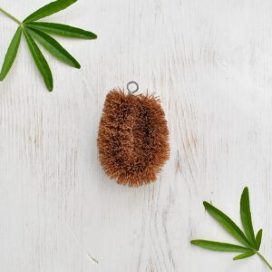 LoofCo Coconut Mini Scrub Brush