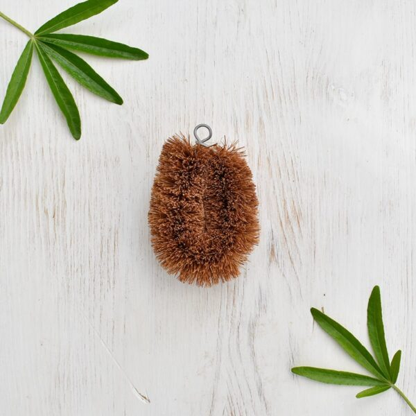 LoofCo Coconut Mini Scrub Brush