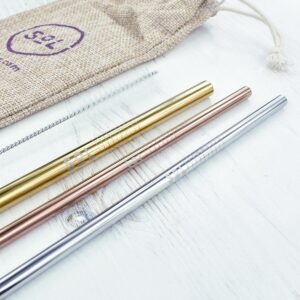 SoL Stainless Steel Straws With Cleaner & Travel Bag Close Up