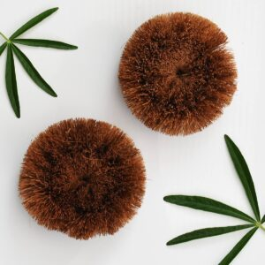 Eco Coconut Coconut Scourer Brush 2 Pack