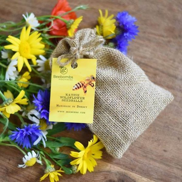 Beebombs Native Wild Flower Seedballs With Flowers